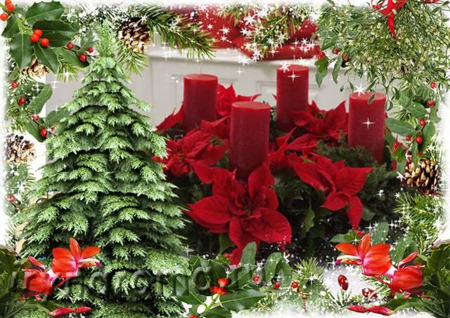 Рождественские символы и традиции в великобритании