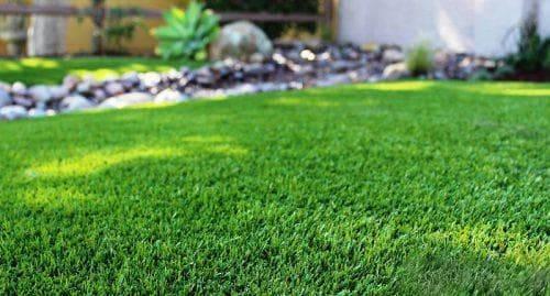 Какой рулонный газон купить и как его уложить своими руками