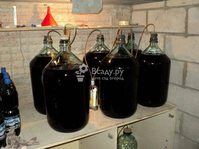 Рецепты приготовления вина из варенья в домашних условиях