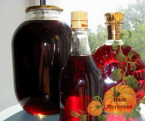 Простой рецепт вина из черноплодной рябины