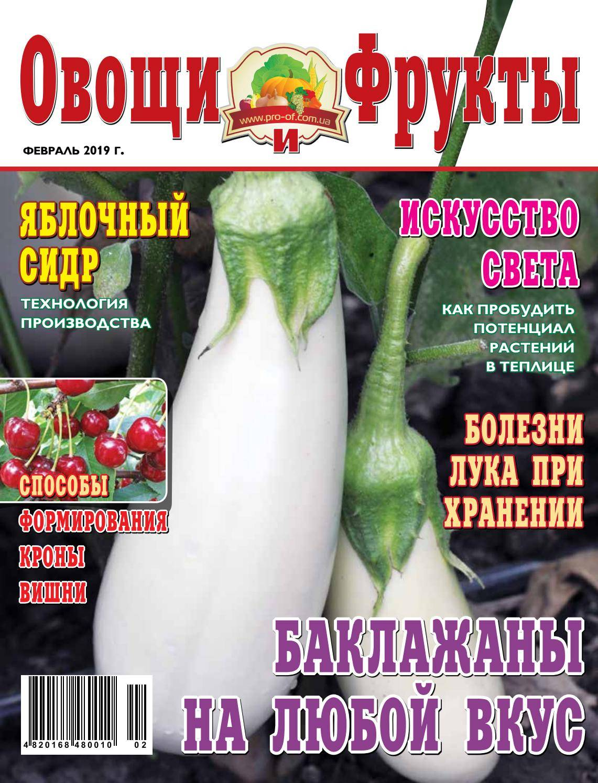 Соседство овощей на грядках: таблица совместимости