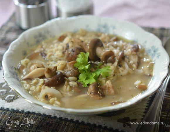 Как приготовить из сухих грибов. учимся правильного готовить сушеные грибы