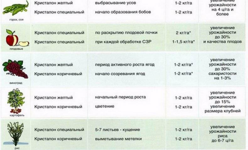 Кристалон: удобрение для любых растений. описание и технология применения