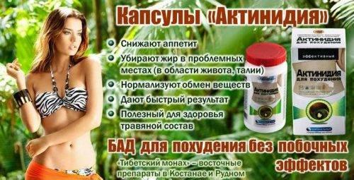 Актинидия: полезные свойства ягоды