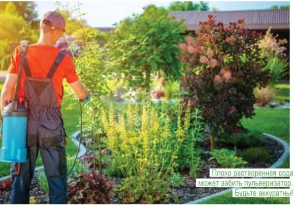 Применение карбофоса — инструкция по применению в саду, видео