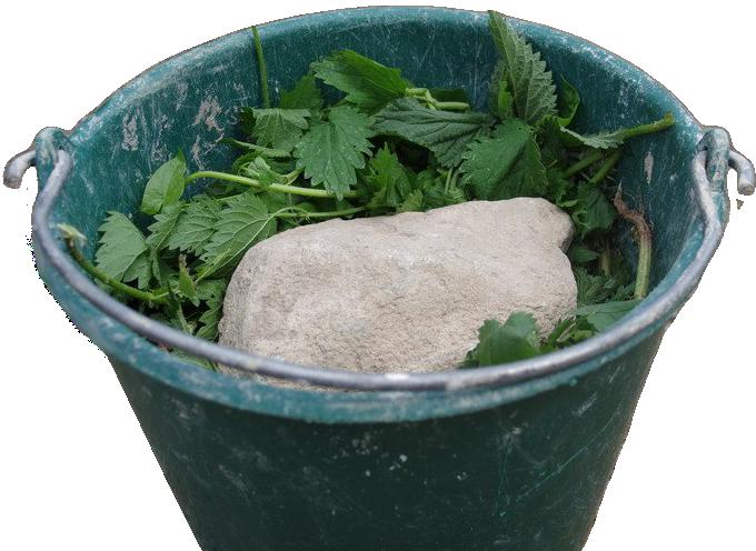 Крапива, как удобрение для растений: особенности, правила применения, рецепты приготовления подкормок