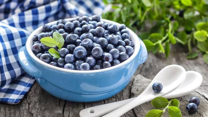 Черничные вкусности или как заготовить ягоды черники на зиму