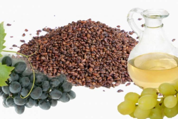 Полезные свойства виноградного масла и его применение