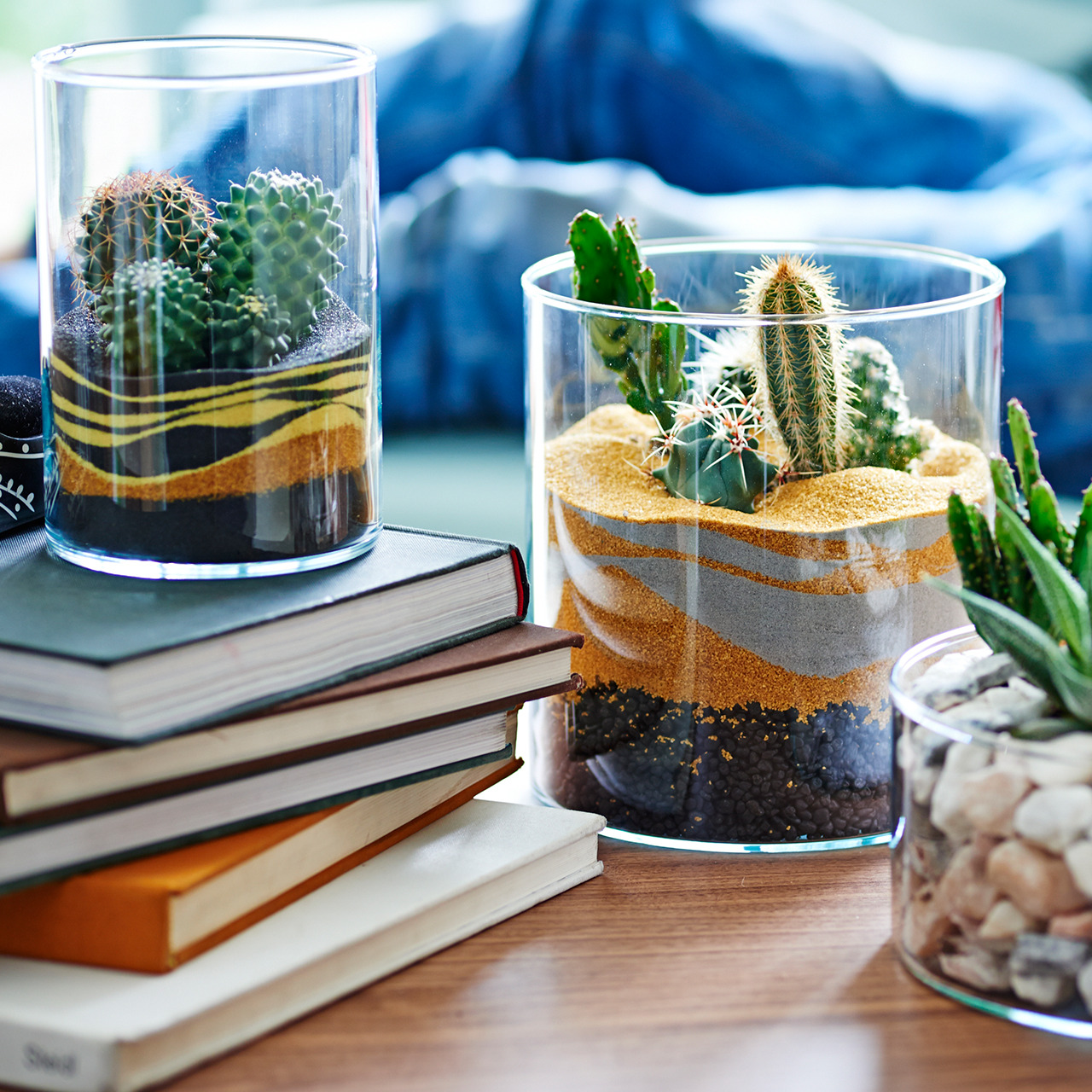 Флорариум своими руками: как сделать мини-сад в стекле