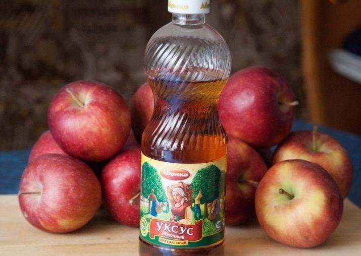 Яблочный уксус при варикозе: применение (как правильно принимать)