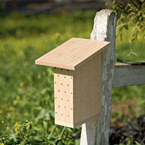 Устройства ульев для пчел, их особенности, конструкции и как выбрать