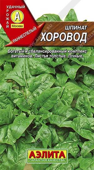 Советы о том, как правильно собирать шпинат. сколько урожаев в год можно получить?