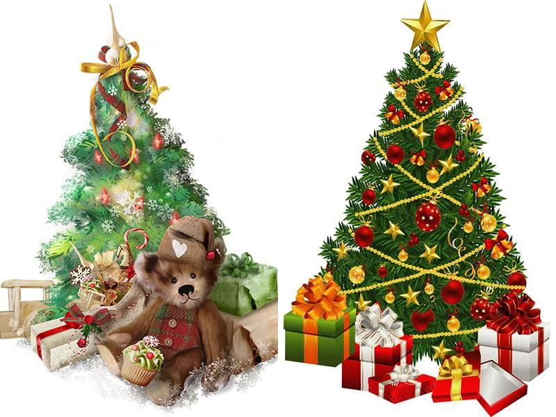 Когда и почему ель стала символом рождества?