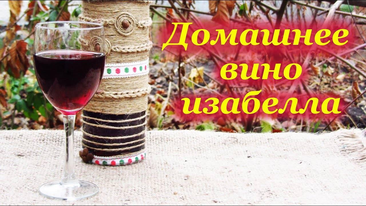 Виноградное вино из винограда в домашних условиях (простые рецепты)