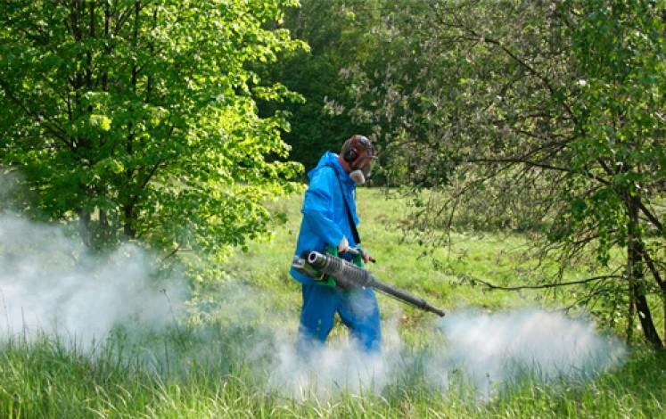 Чем участок обработать от клещей: применение химических препаратов и народных методов