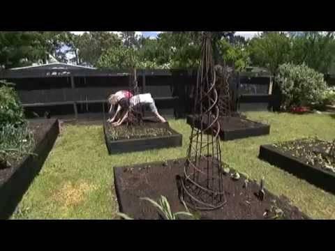 Умный огород без хлопот — в радость для настроения и в пользу для организма
