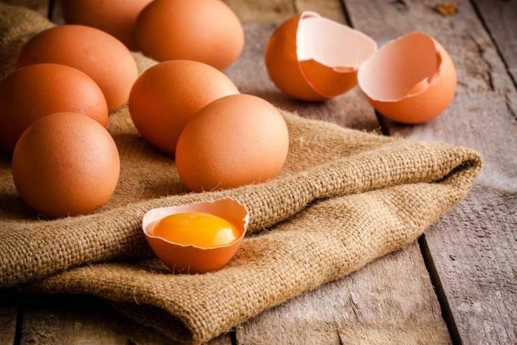 Мои 4 проверенных способа использования яичной скорлупы на дачном участке