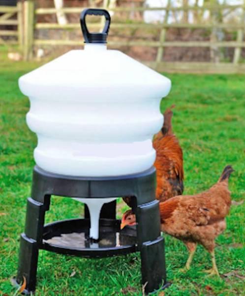 Делаем поилку для цыплят своими руками из подручных материалов
