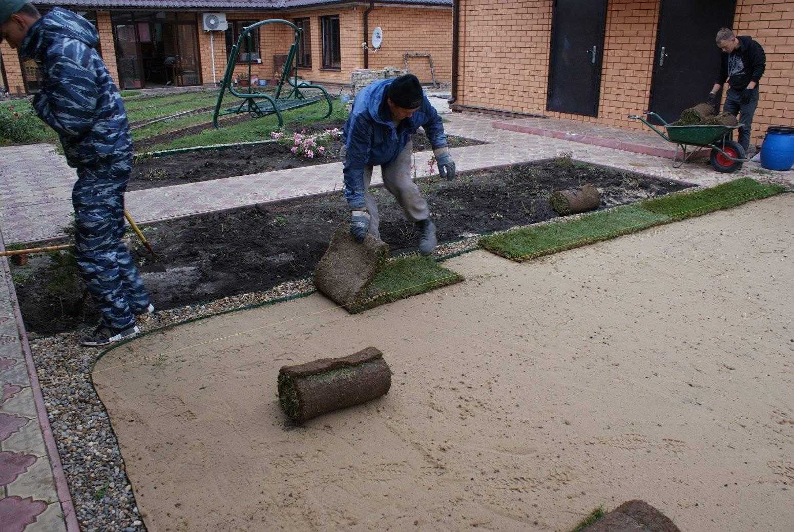 Почва для газона, какая должна быть видео