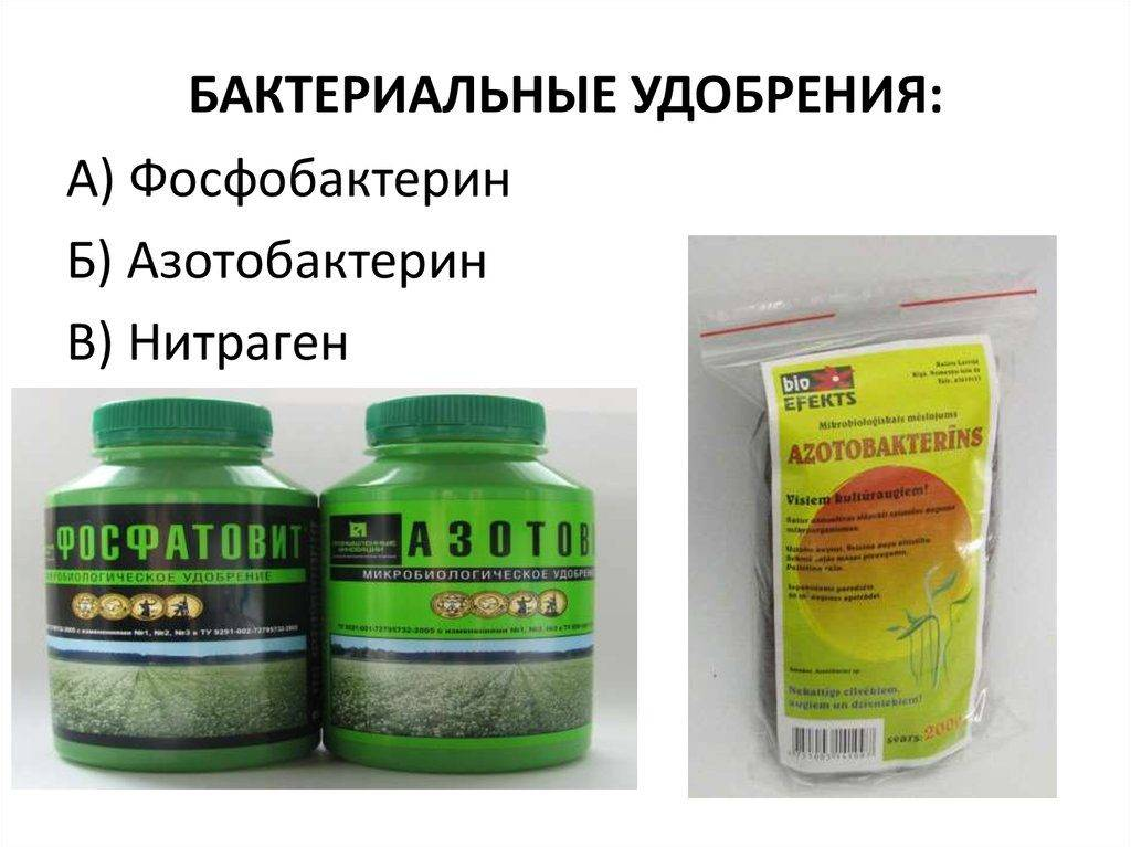 Удобрение «цветень»: назначение препарата, инструкция по применению