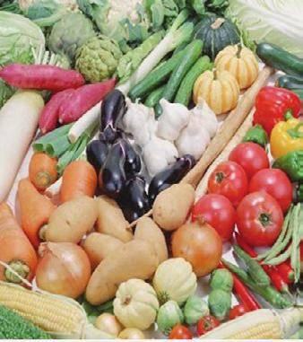 Применение карбофоса в саду и огороде — правила и нормы обработки от вредителей