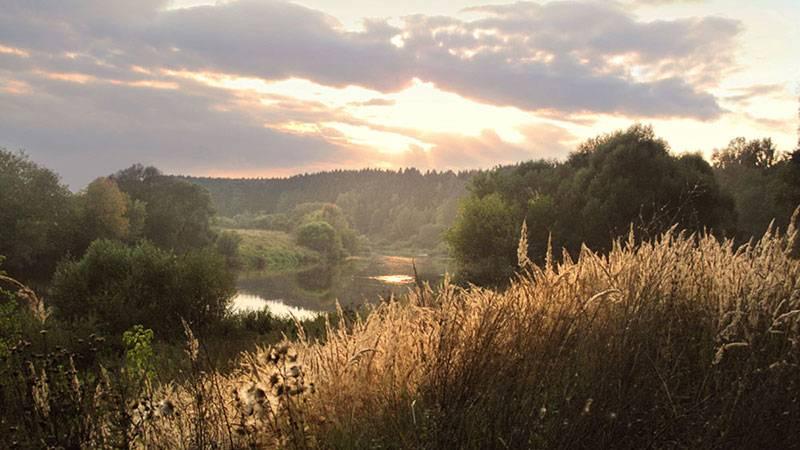 Создание нового национального зеленого парка «Московия»