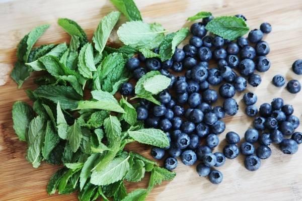 Полезные свойства черники: чем удивит нас маленькая черная ягодка