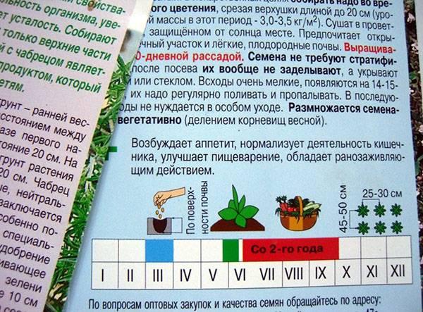 Что такое вегетация плодовых деревьев: поясняем все нюансы