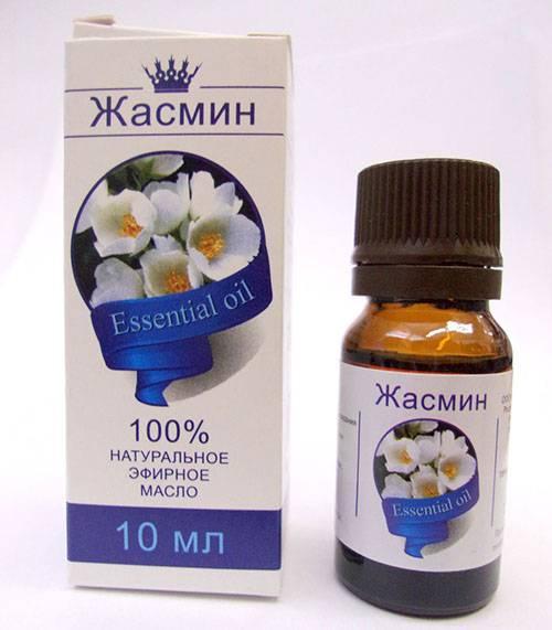 Масло жасмина, полезные свойства и сфера применения