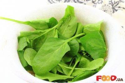Кладезь полезных веществ – на грядке и дома! знакомство с новозеландским шпинатом и рекомендации по его выращиванию