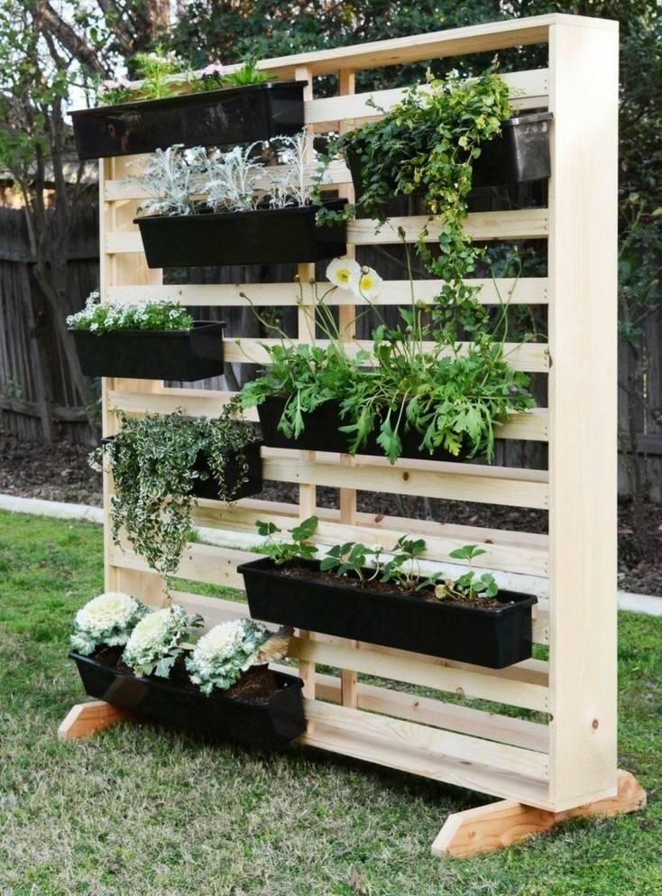 Красивый огород. 100 фото красивых грядок на даче