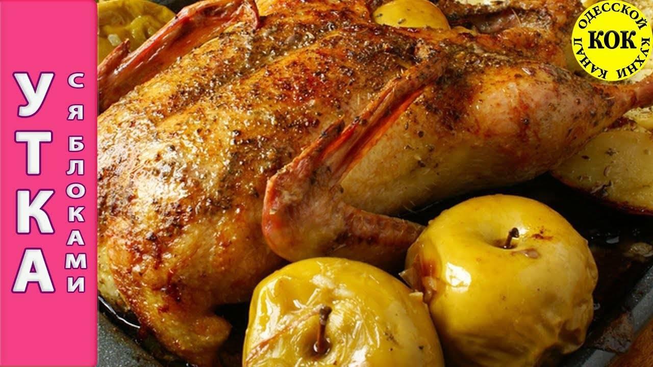 Утка с яблоками в духовке запеченная в рукаве: очень мягкая и сочная с хрустящей корочкой