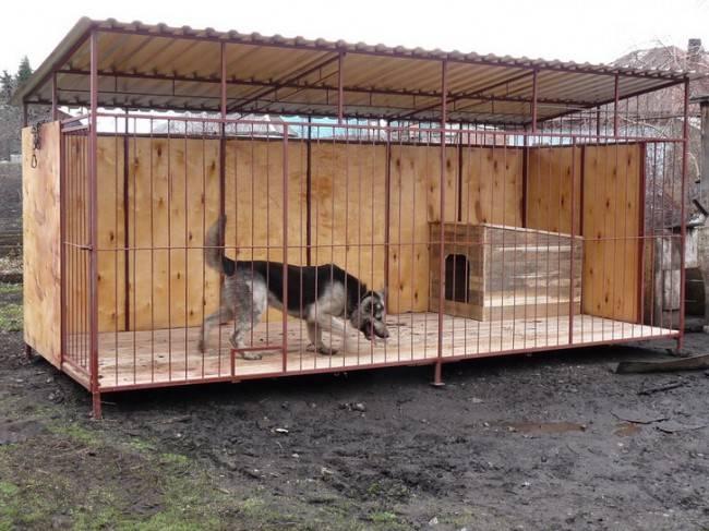 Как построить вольер для немецкой овчарки своими руками, чертежи и размеры