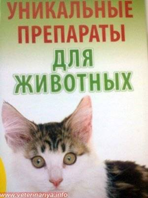 «ветом 1.1»: как разводить и давать кошкам