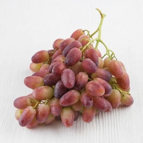 "Виноград ""ризамат"": описание, характеристики и фото сорта"