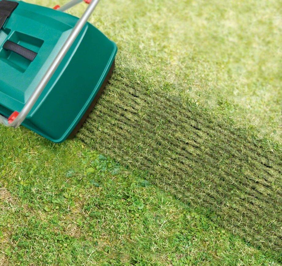 Что такое вертикуттер — как выбрать модель для газона на своем участке