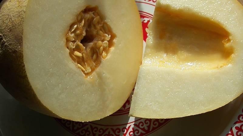 Что полезнее для организма дыня или арбуз?