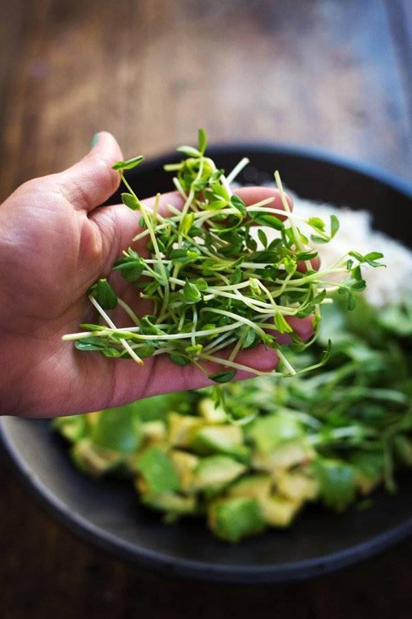 Как вырастить кресс-салат на даче, уход за растением в открытом грунте