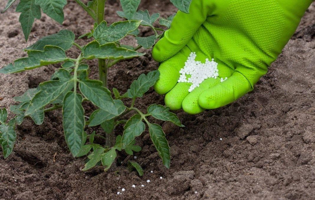 Комплексное удобрение кристалон для всех видов растений