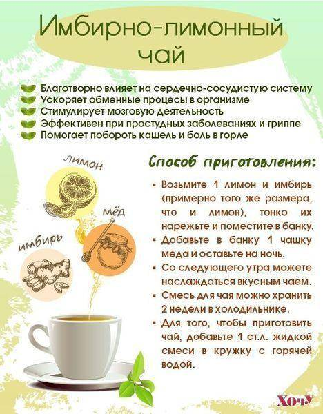 Рецепты облепихового чая как в шоколаднице