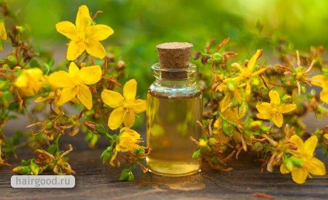 Зверобой масло лечебные свойства позвоночник