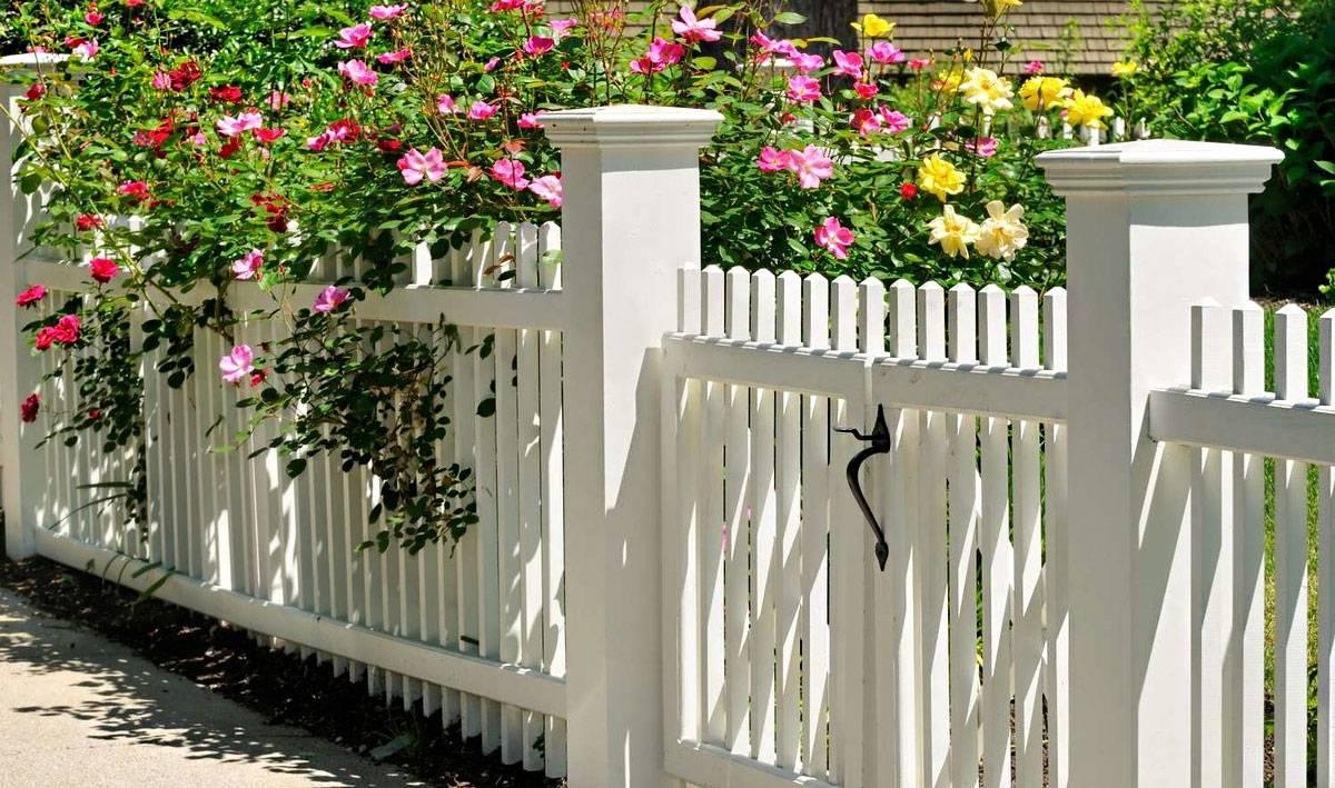 Можно ли ставить глухой забор между соседями в частном доме: нормы по закону в снт и ижс