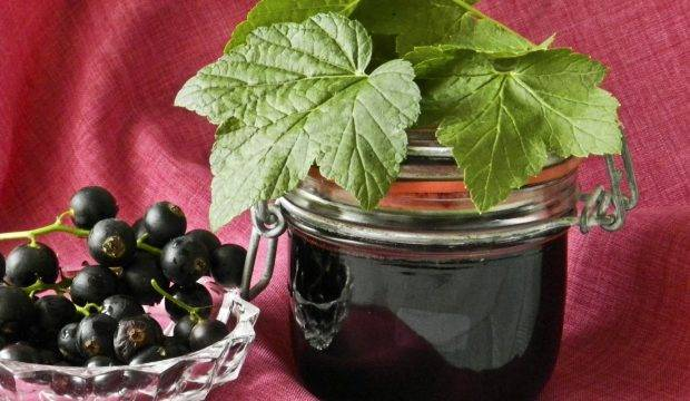 Яблочное желе на зиму с желатином и без: 9 лучших пошаговых рецептов приготовления
