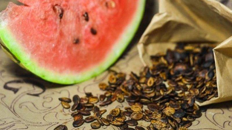 Чем полезны арбузные семечки для здоровья и какие противопоказания, как правильно их есть
