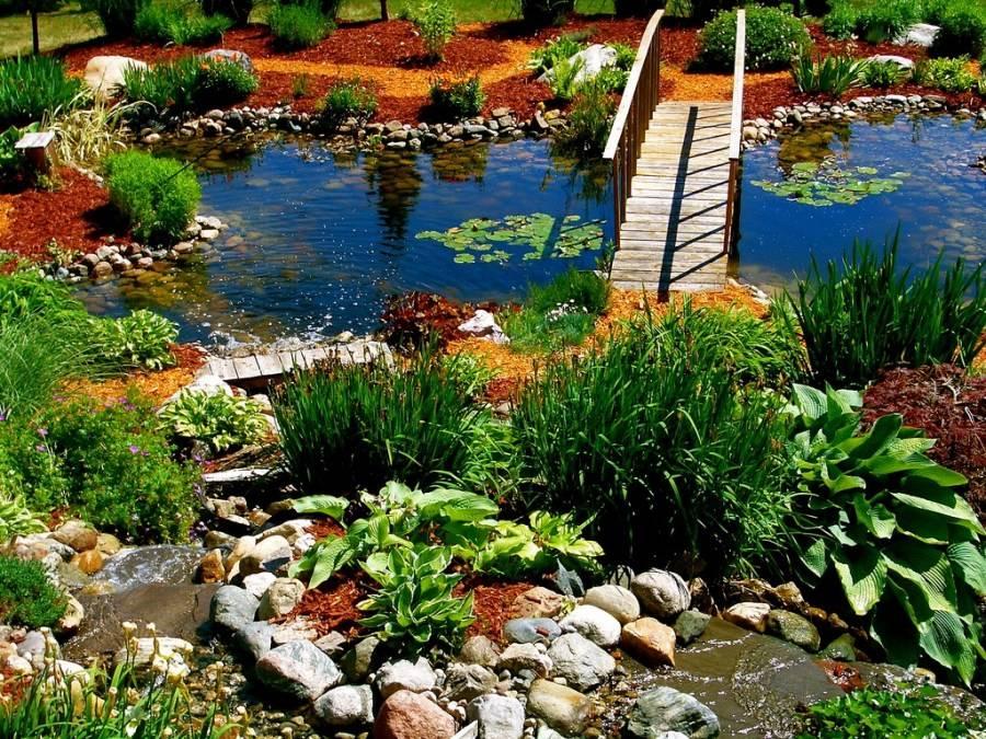 Популярные ландшафтные идеи по обустройству пруда на даче: 58 фото, видео, советы и рекомендации
