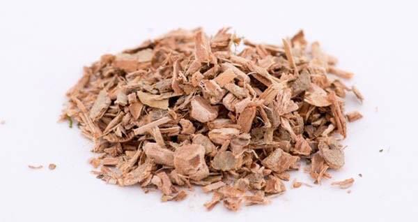 Листья лещины: лечебные свойства и противопоказания, применение в народной медицине