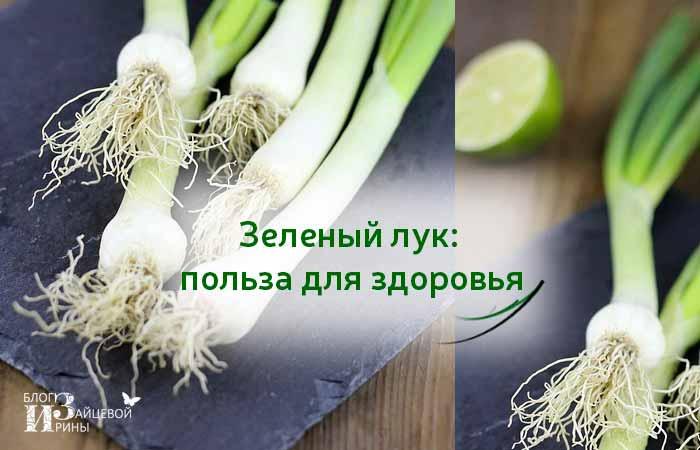 Зеленый лук: польза и вред