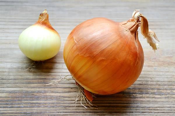 Лук-батун. полезные свойства, состав, калорийность, лук-батун в кулинарии