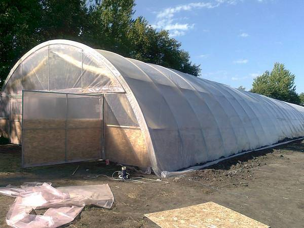 Как построить зимний сад на крыше. устанавливаем теплицу на крыше или чердаке дома