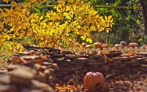 Календарь работ в саду, огороде и цветнике на сентябрь: подробнейший план осенних работ для дачников